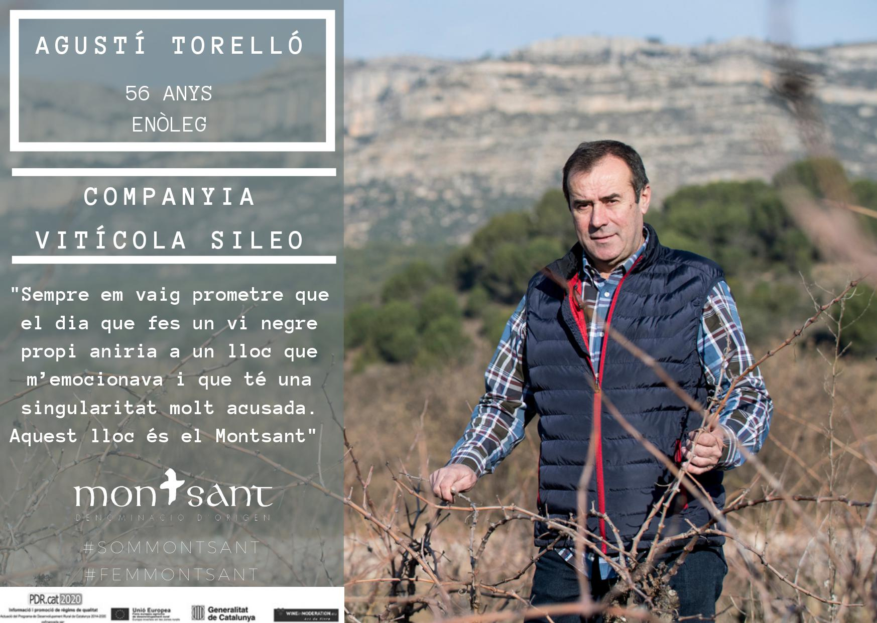domontsant_viticola_sileo