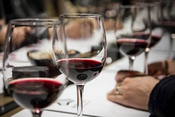 El 50% de los vinos con denominación de origen catalana de la 'Guía Peñín 2021' obtienen la calificación de excelentes