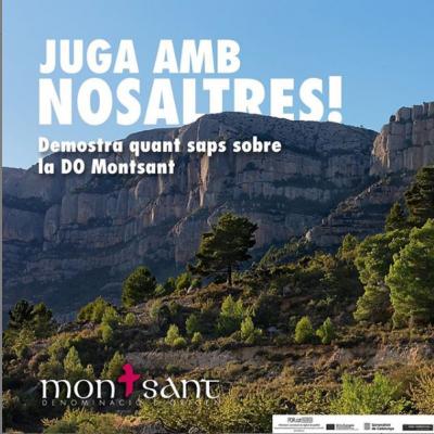 imatge Iniciativa xarxes DO Montsant